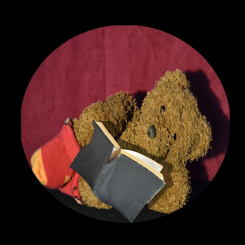 Lyrikraum. Maria der Bär mit Buch.